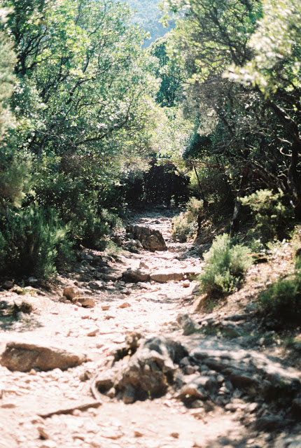 Hiking Trekking in Corsica