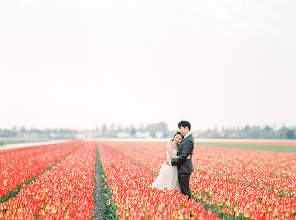 Netherlands Flower Field Prewedding Engagement Photographer
