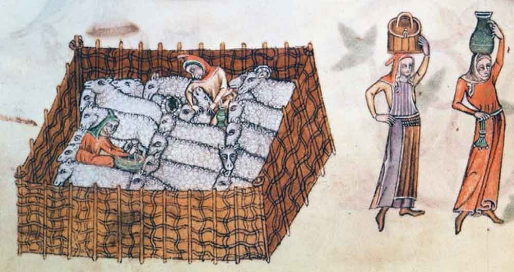 Sheep pen with shepherds from the Luttrell Psalter, c1325