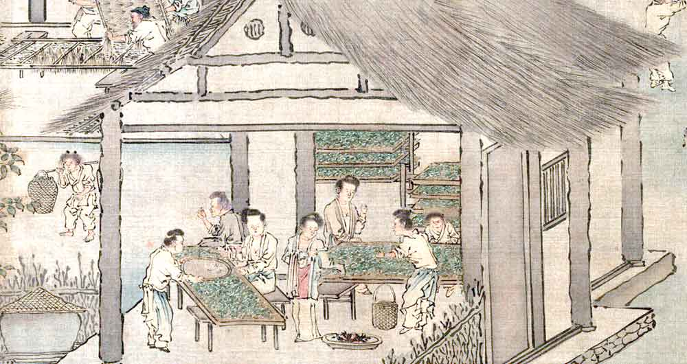 Sericulture, placing silkworms on trays with mulberry leaves, c1200s