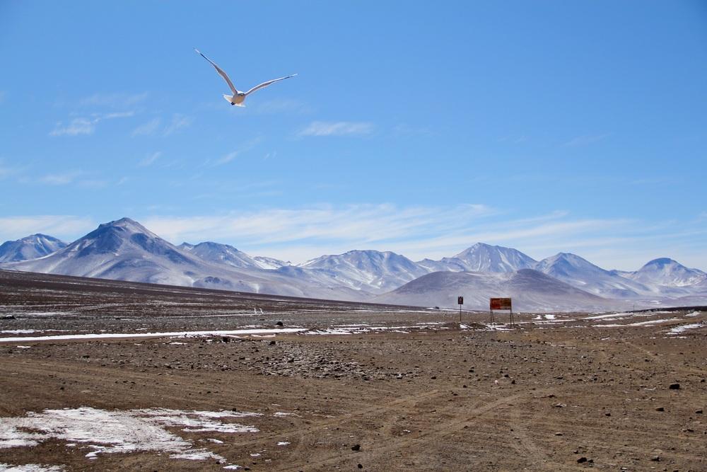 Confine Cile-Bolivia