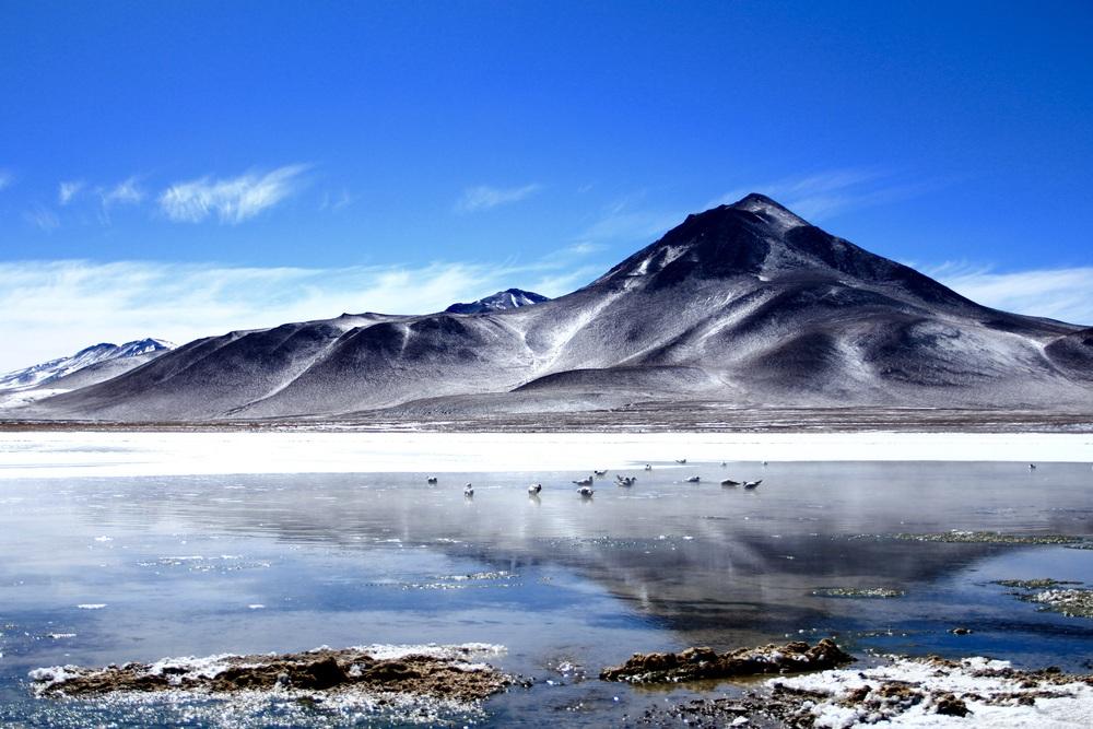 Laguna Blanca - Bolivia