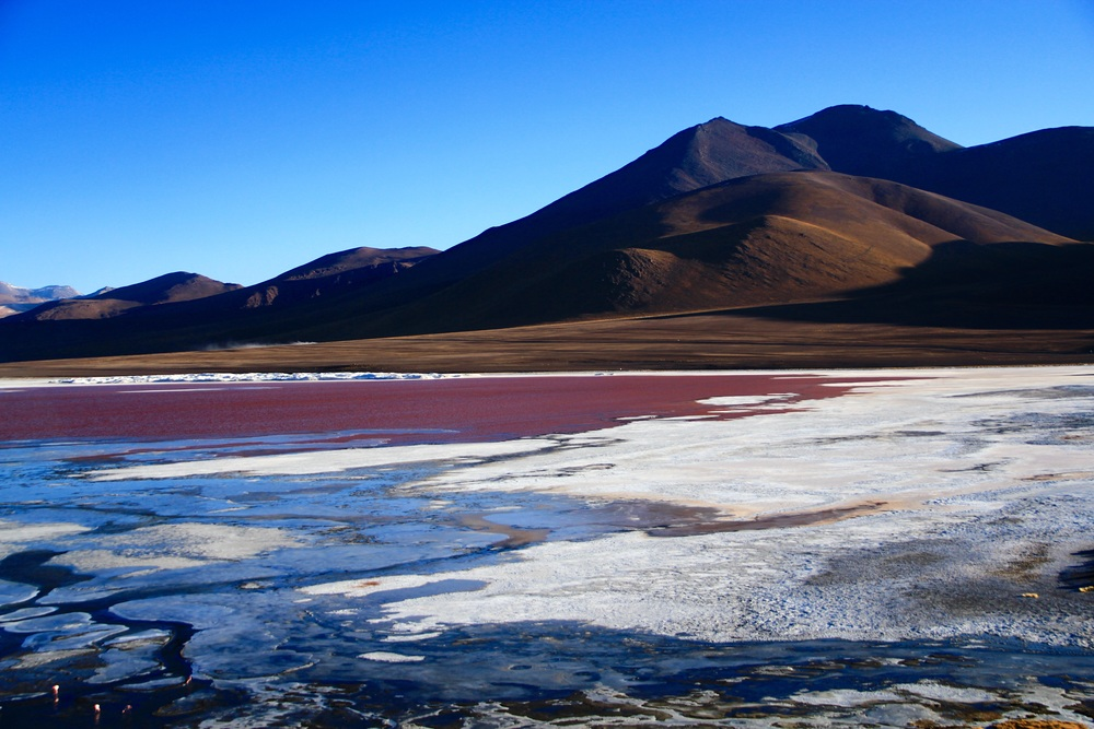 Laguna Colorada - Andean Reserve, Bolivia