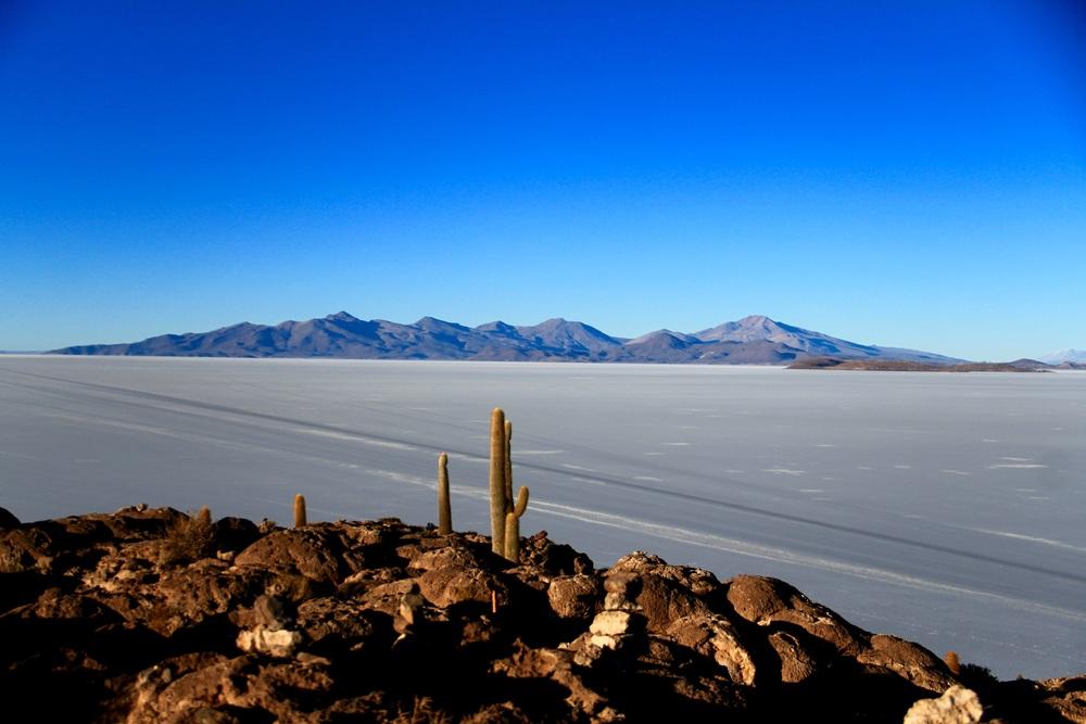 Isla Incahuasi - Salar de Uyuni, Bolivia