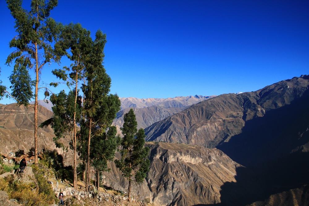 Colca Canyon - Perù