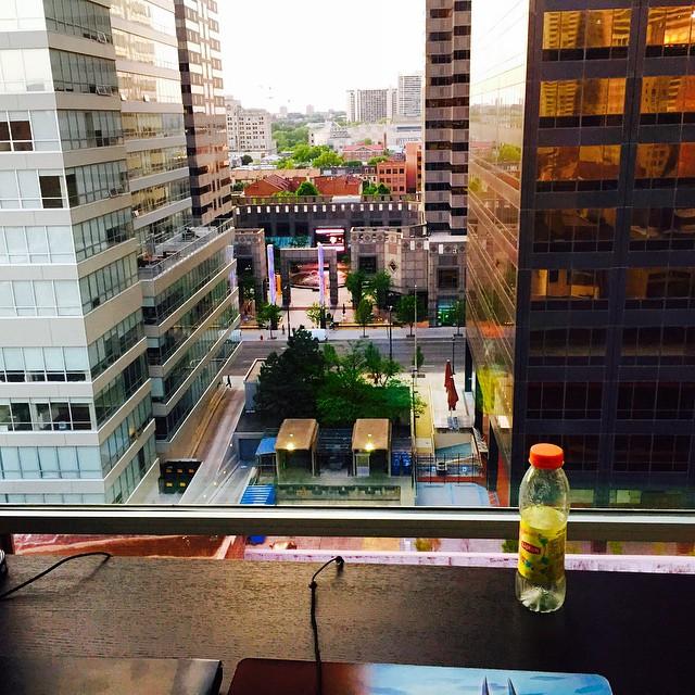 My neighbor has a pretty sweet desk view!