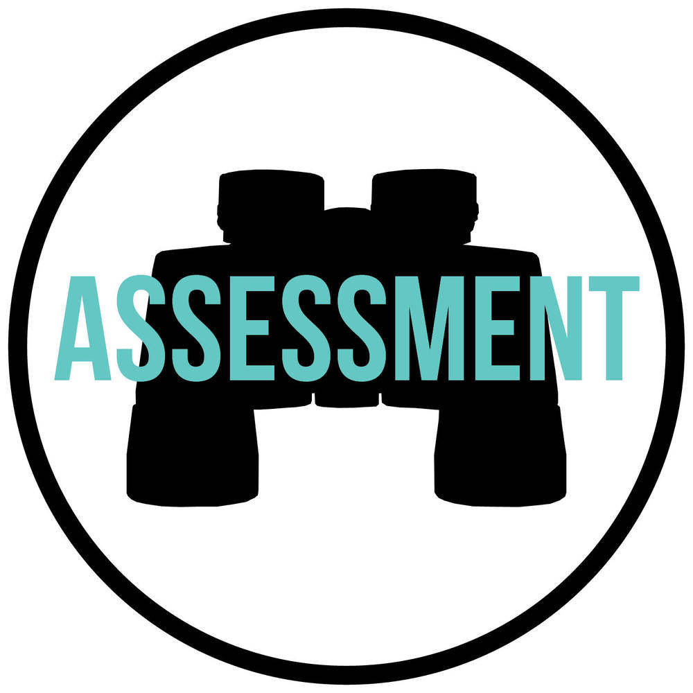 Assessment Symbol with words.jpg