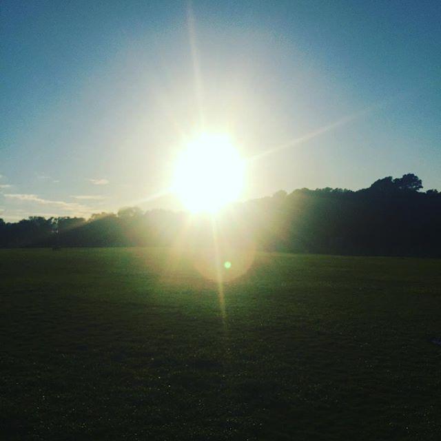 Zilker Park, Austin. ✨💛✨