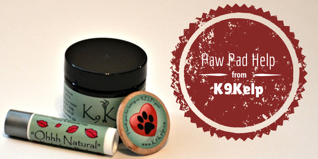 Dog Paw Pad Help from K9 Kelp