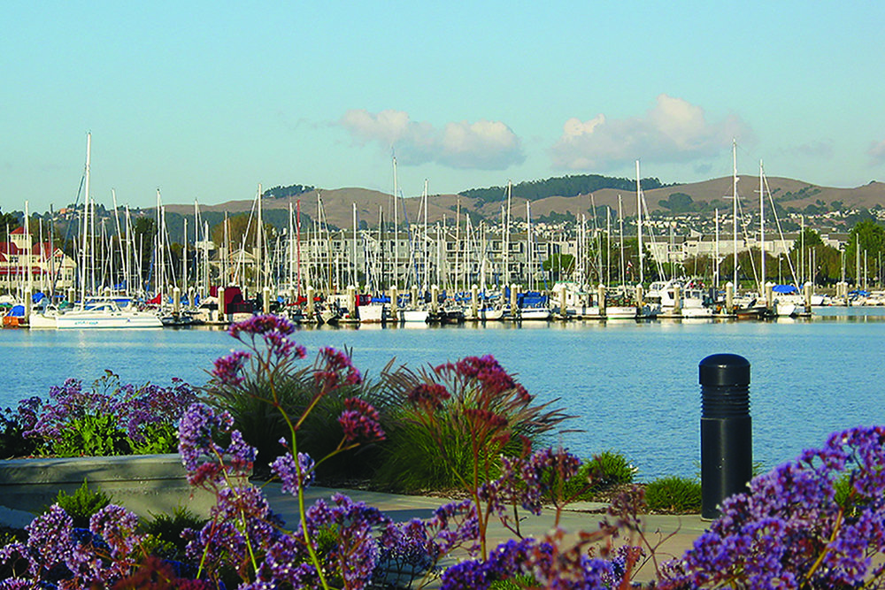 Richmond Bay Marina|  Richmond Bay, California