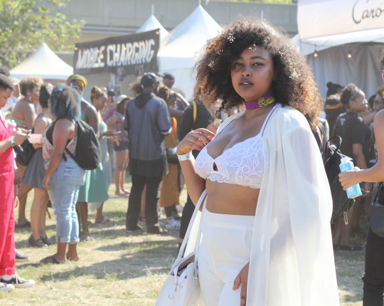 Afropunk, Brooklyn, 2016