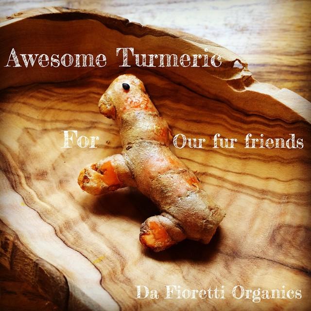 Sometimes fresh turmeric gives you a big smile