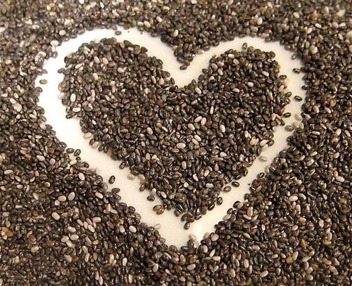 Chia seeds are super food for people and dogs.