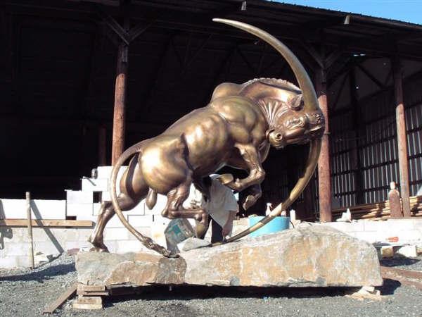 bull_wide.jpg