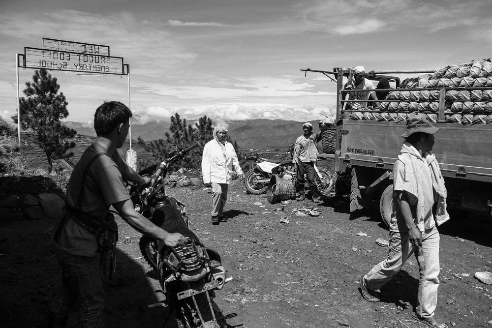 Farmers prepare vegetables that were to be transported to the lowlands. The Ikalahan's source of living is primarily agricultural. Abucot, Kabayan, Benguet.