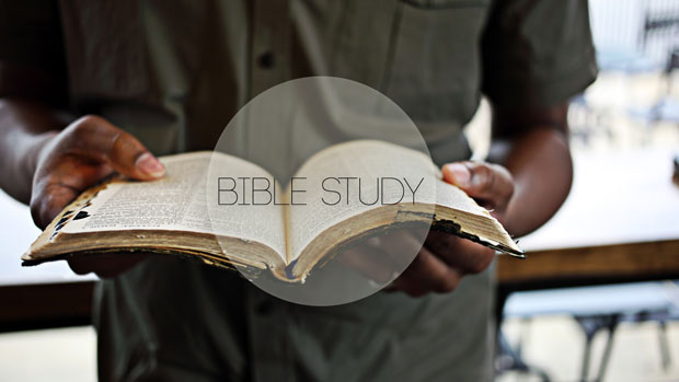 BIBLE STUDY TOOLS & CATECHISM