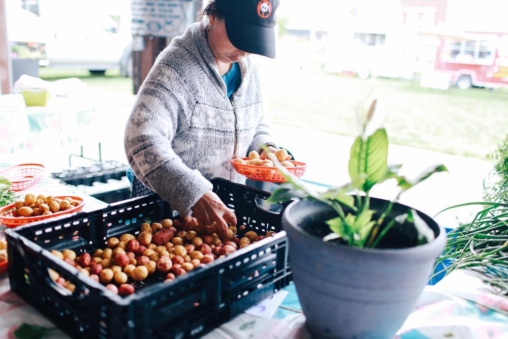farmers_market-54.jpg