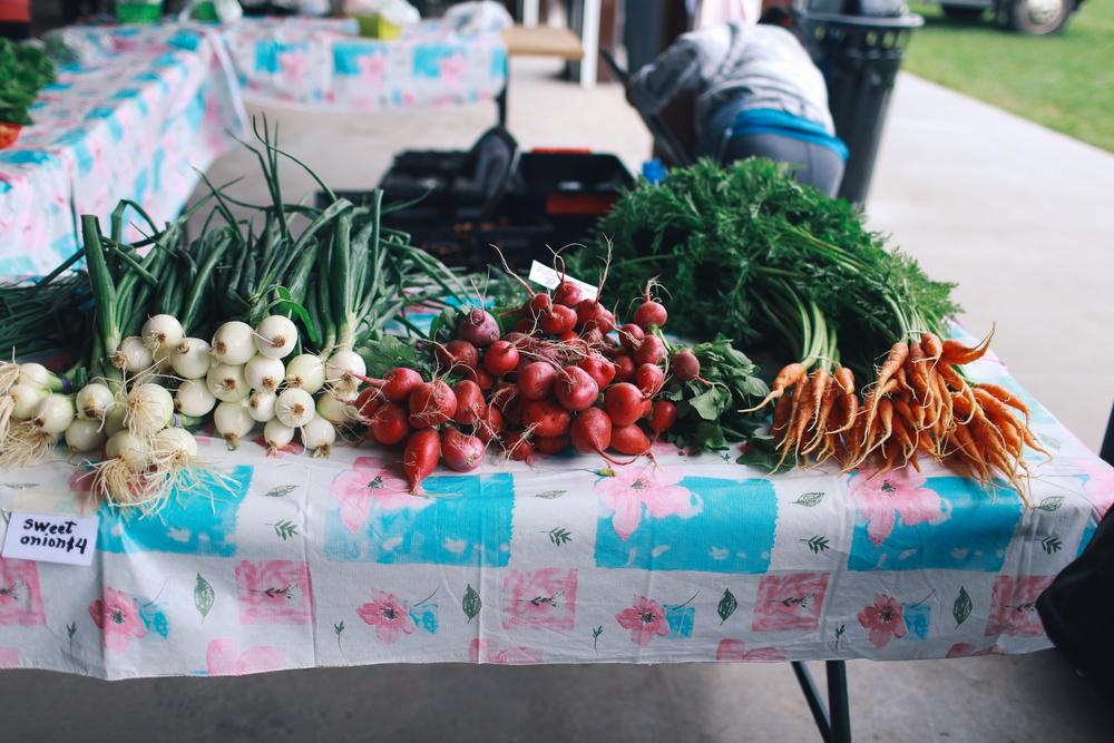 farmers_market-56.jpg