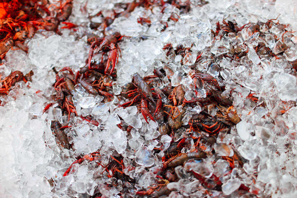 crawfish_boil-5.jpg
