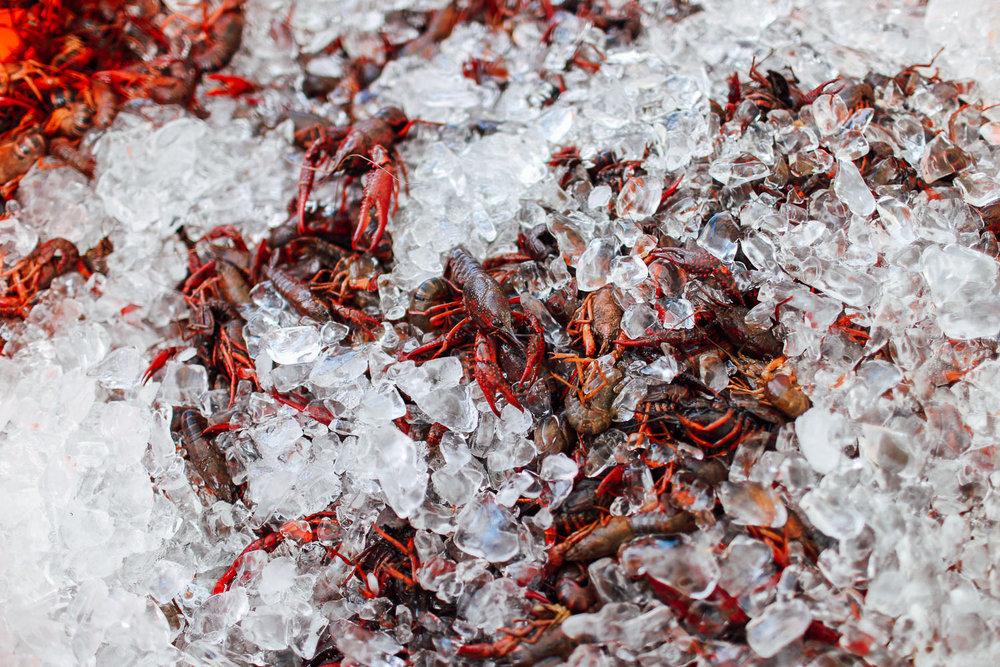 crawfish_boil-5.jpg
