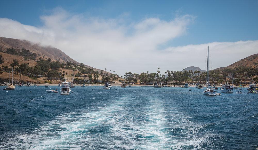 California2018_28.jpg