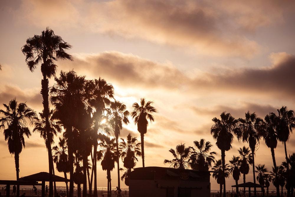 California2018_30.jpg