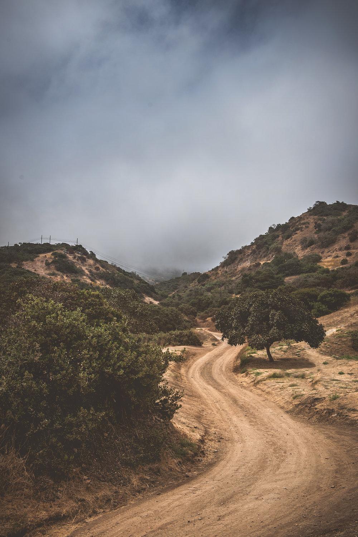 California2018_38.jpg
