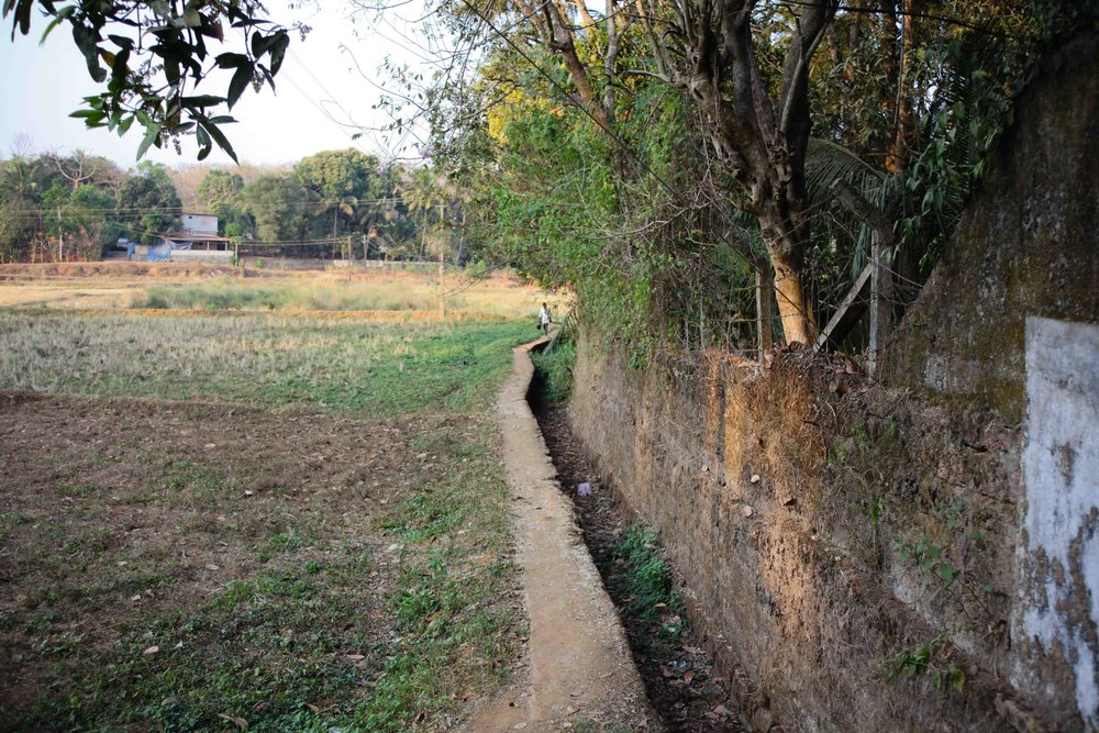 This was the path to the house before the road was built, it leads through the paddy fields into the town.