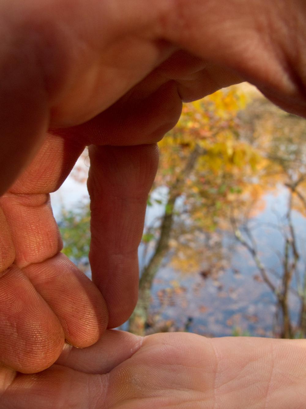"Fingers, #50  ,  2010, 43"" x 34"", Pigment print"