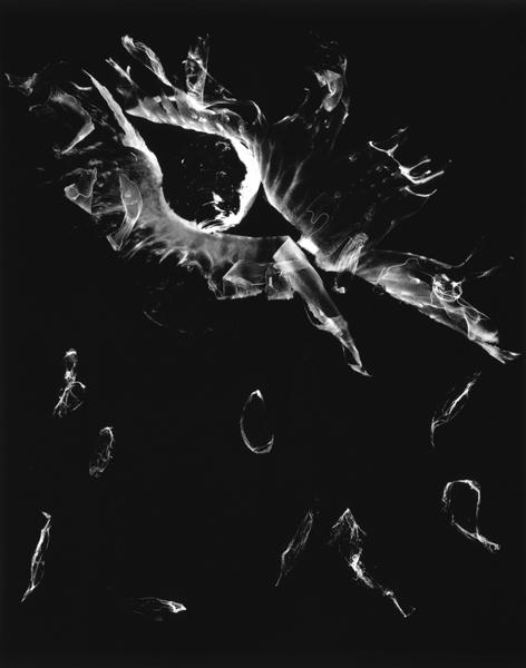 "Pieces  ,  2000, 40"" x 30"",Unique Silver print"