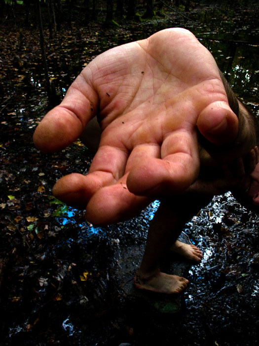 "Hand over body, #99  ,  2010,42"" x 33"", Pigment print"