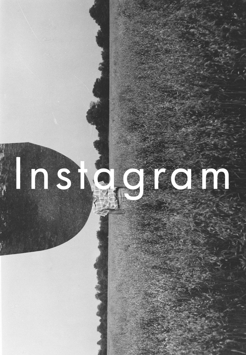 Houseofquinn-Instagram-page