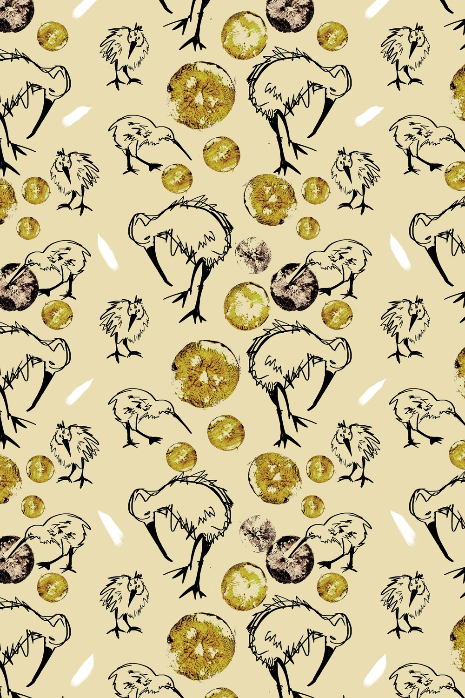kiwibird.jpg