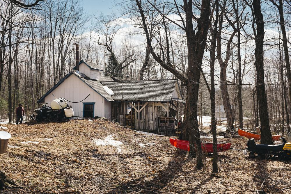 Une journée dans une cabane a sucre au Québec, on s'y retrouve en famille et entreamis pour récolter le sirop d'érable.