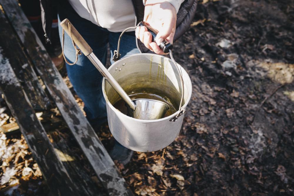 Cbane à sucre Chassé-0414-77.jpg