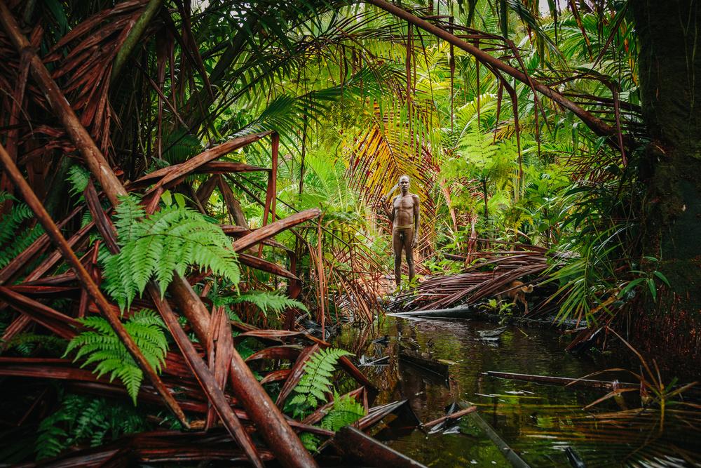 Les Korowais, une société à la culture millénaire où l'on vit dans les arbres d'une forêt qui protège et nourrit. Découverte en 1974, la Tribu semi-nomade évolue en quasi autarcie dans la jungle dense de Papouasie.Ce mode de vie traditionnel subit une transformation accélérée sous l'effet de la modernité et du gouvernement Indonésien.