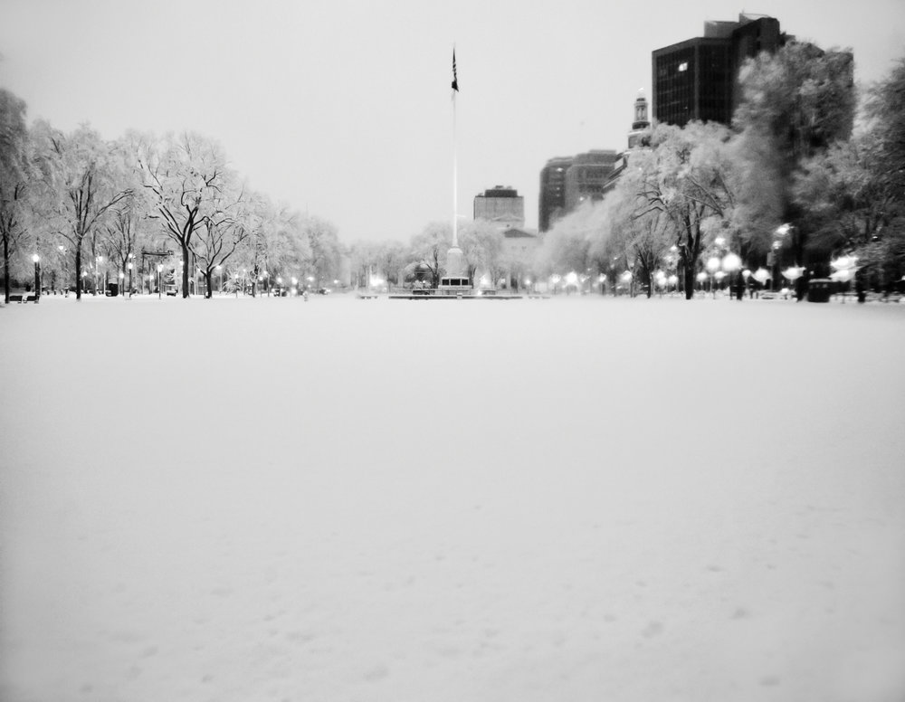 January: New Haven Green
