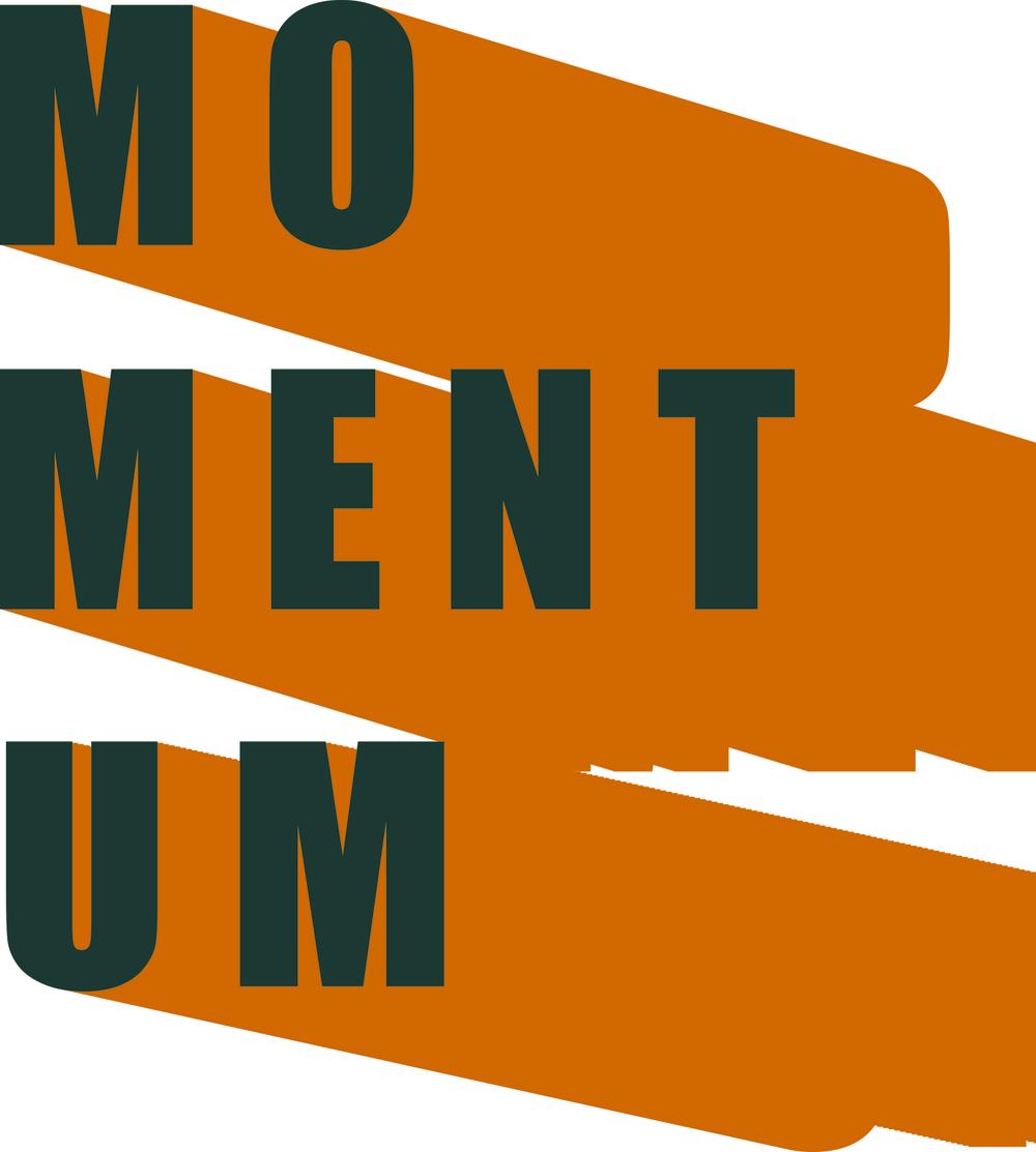 13 - Momentum