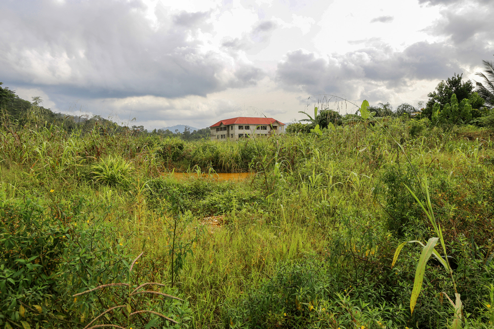 Reclaimed land in Kyebi
