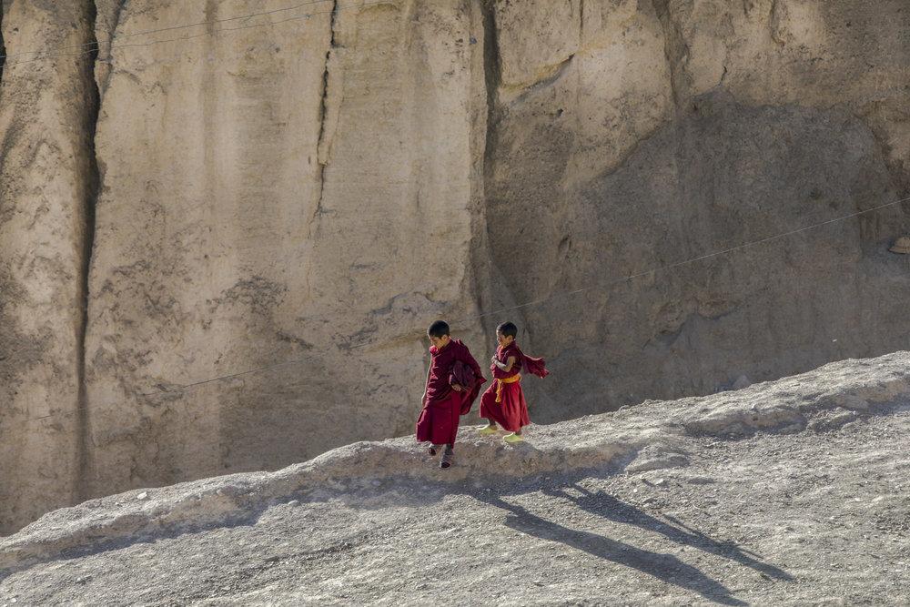 Young monks from Yuru gompa, Lamayura, Ladakh