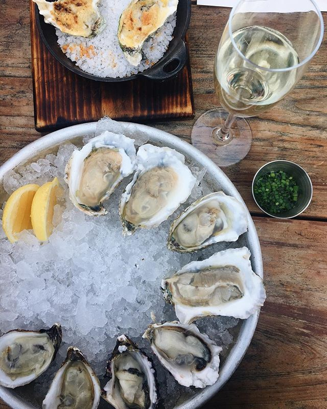 vacation didn't end when I got home🙌🏼 @beetlecatatl #atlantafood #oysters #seafood #vacation #eatwell
