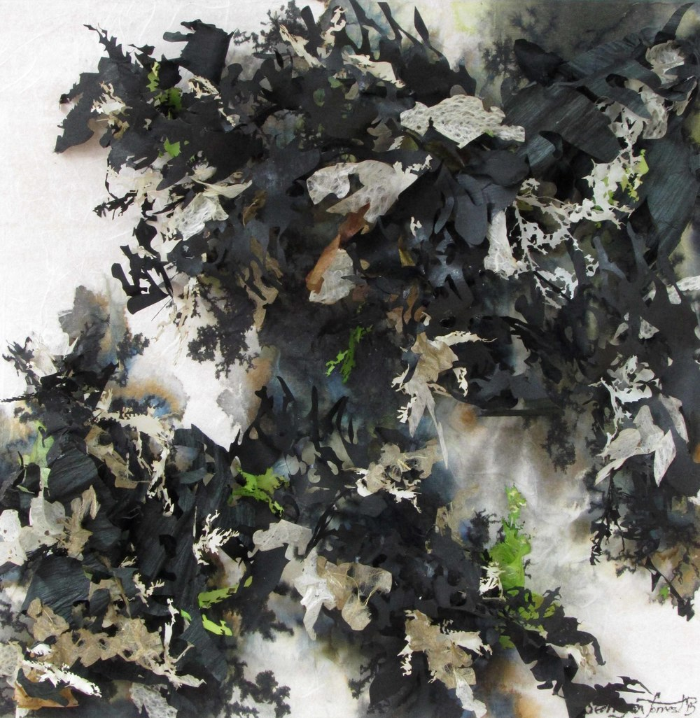 Lichen & Leaves #4,  2015, Sumi & India ink, digital imagery & hand & laser die cut washi (paper) and panel, 12 in x 12 in x 3 in  (relief sculpture)