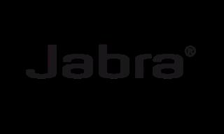 logo_0x300.png