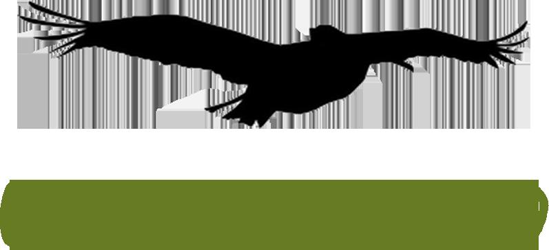 Outerlands Restaurant Gift Card