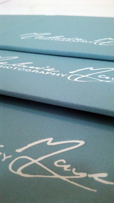 White foil on eggshell blue book cloth