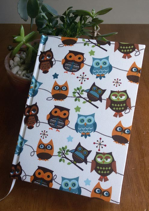 the_binding_studio_books_owls.jpg