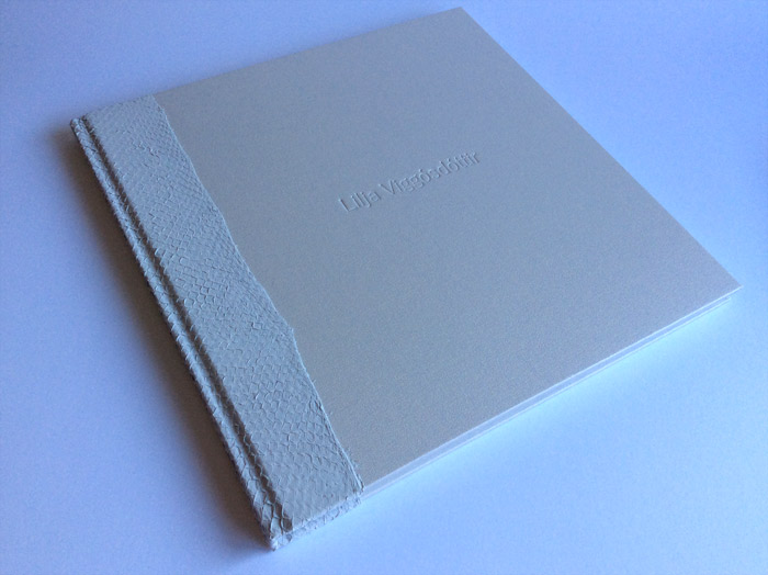 the_binding_studio_student_book_slipcase_fashion_portfolio_fish_leather_lookbook.jpg
