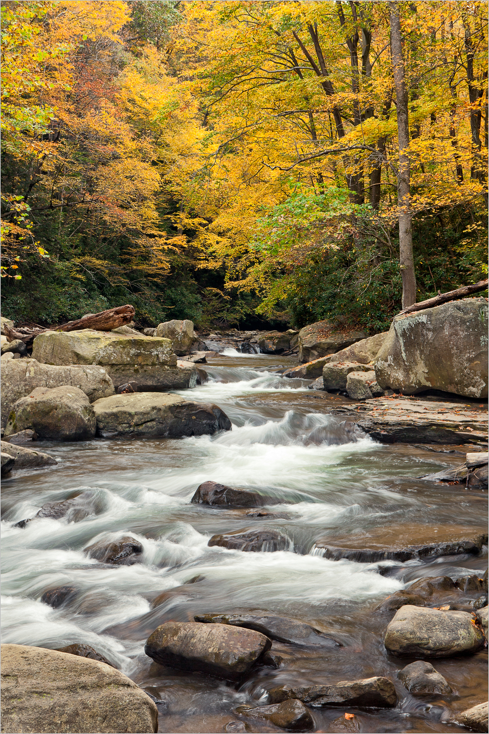 Autumn scene at the entrance to The Flumes, Ohiopyle State Park, PA