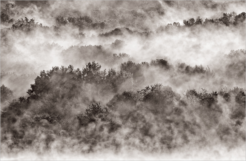 """Not The Smokies"" Early Morning Fog In Moraine State Park    © Howard Grill"