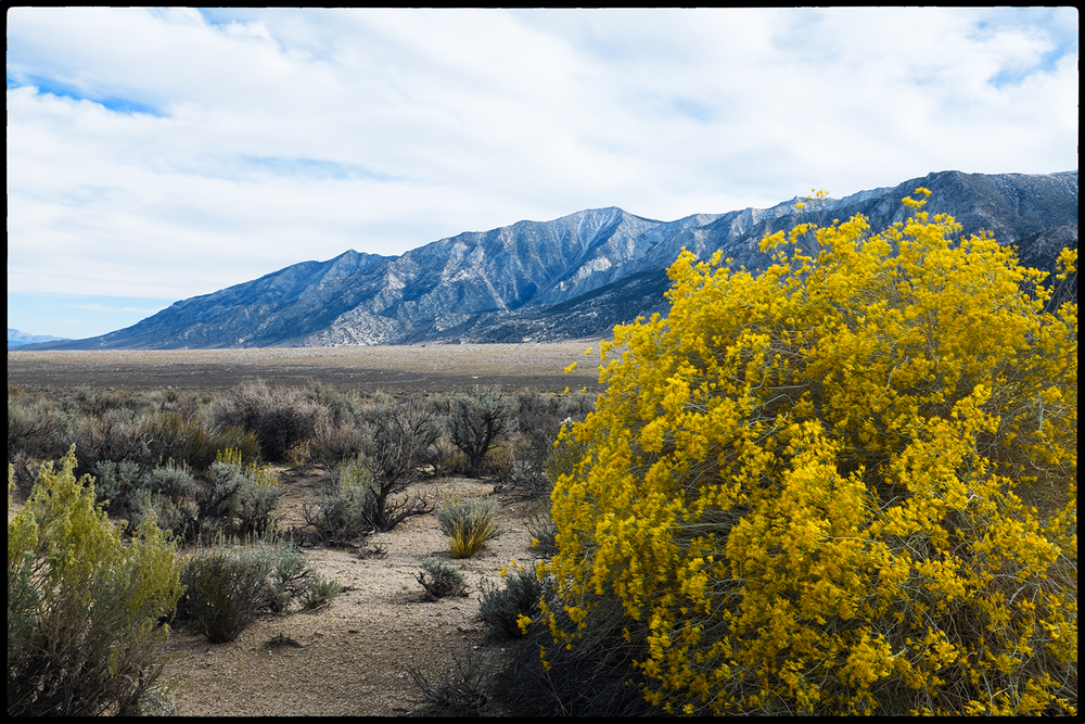 Along the Mt. Whitney Portal Road outside of Lone Pine, California  Fujifilm X100S